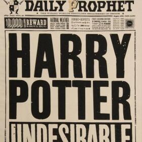 Torchon La Gazette du Sorcier Harry Potter Indésirable Numéro 1 MinaLima
