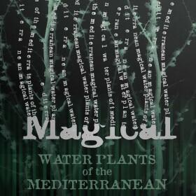 Carte 2 volets les Plantes magiques de la Méditerranée MinaLima