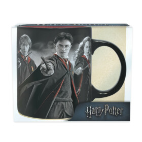 Mug Harry Ron et Hermione en robes de sorcier