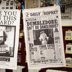 Torchon La Gazette du Sorcier Dumbledore Idiot ou Dangereux MinaLima