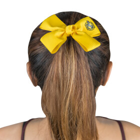 Accessoires pour cheveux Poufsouffle - Classique