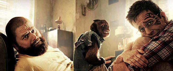 Very Bad Trip - Crystal the Monkey
