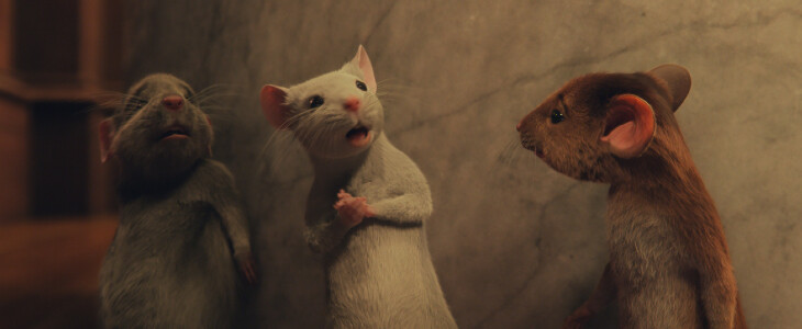 Les trois souris de Sacrées Sorcières.
