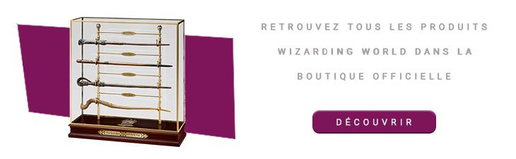 Baguettes des Champions du Tournoi des 3 Sorciers avec présentoir