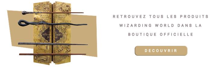 Présentoir la Carte du Maraudeur 4 baguettes