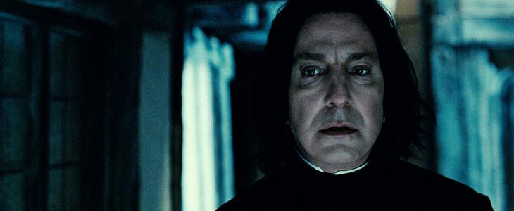 WB95 - Harry Potter Severus Rogue