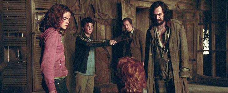 Les héros d'Harry Potter dans la Cabane Hurlante