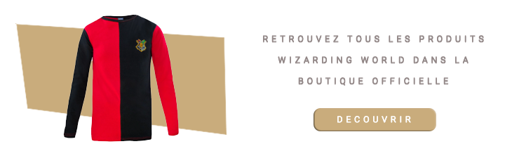 T-shirt Tournoi des 3 Sorciers Harry Potter
