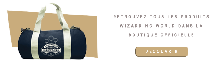 Sac Harry Potter de sport Quidditch