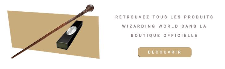 Baguette magique Remus Lupin