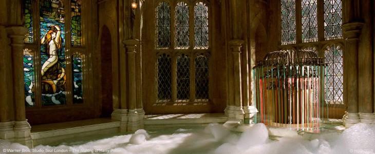 Harry Potter - Studio Tour Coupe de Feu