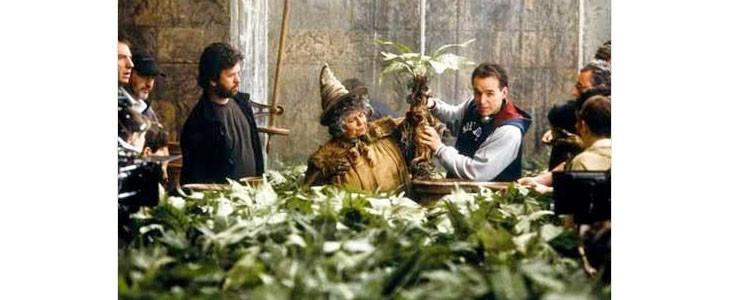 Pomona Chourave dans Harry Potter et la chambre des secrets