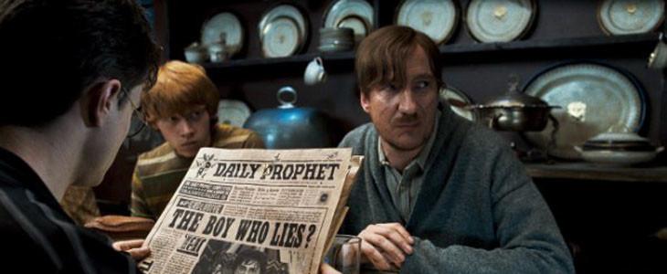 Harry Potter - 12 Square Grimmaurd